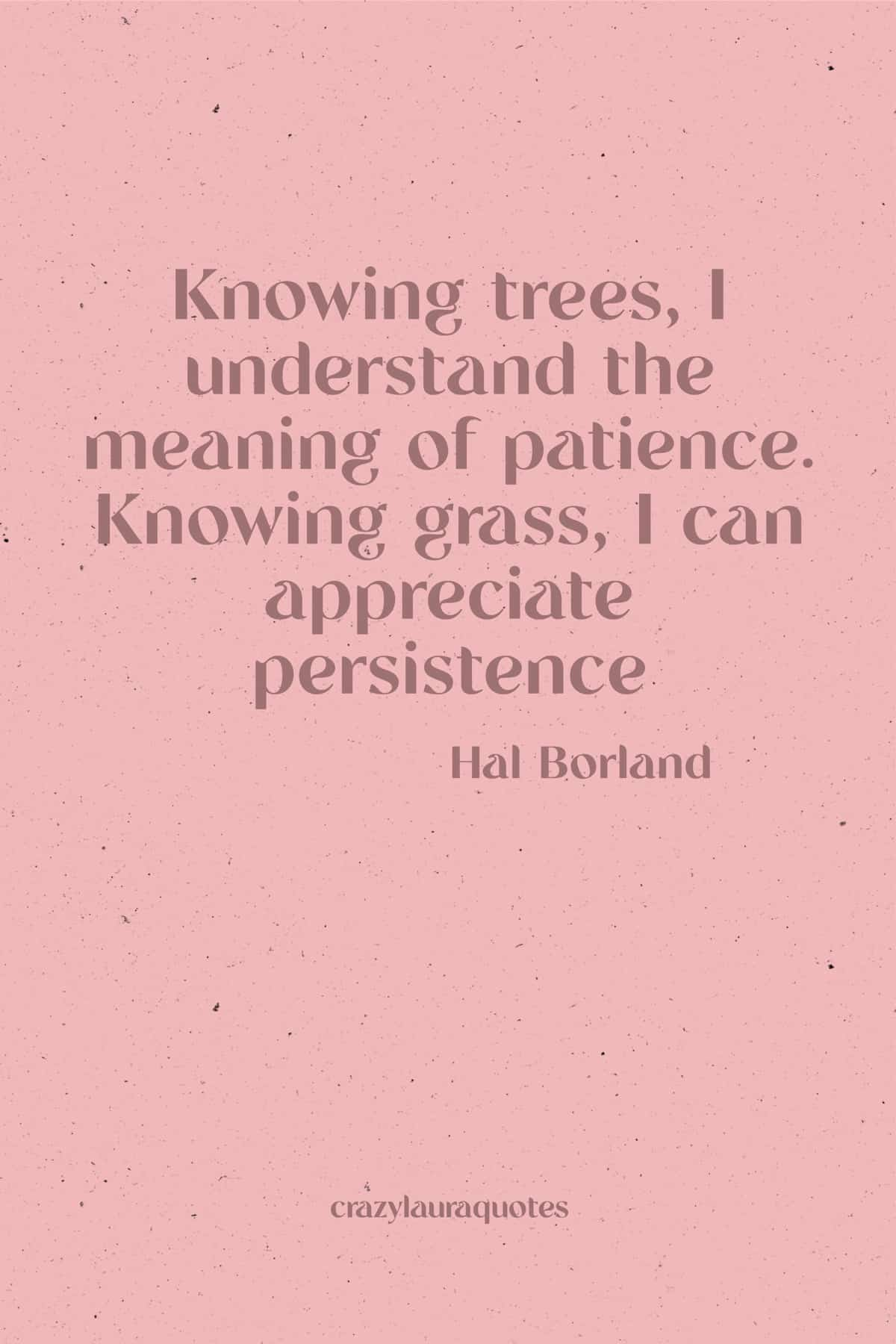 be persistent quote to inspire